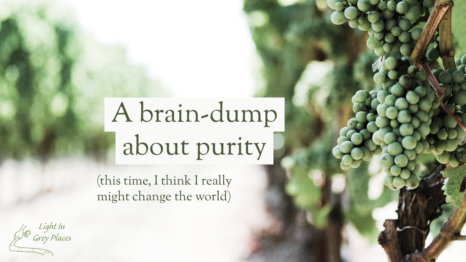 Green grapes on a vine in the sunlight. Text over the top: A brain-dump about purity (this time I think I really might change the world)