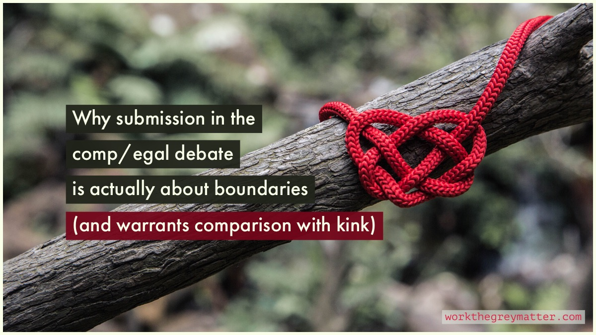 Picture of a branch with a bright red rope around it, tying a double coin knot, with the words: Why submission in the comp/egal debate is actually about boundaries (and warrants comparison with kink) workthegreymatter.com